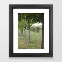 Green Land Framed Art Print