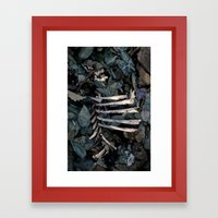 Lovely Bones. Framed Art Print