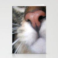 Kitty Nose Stationery Cards