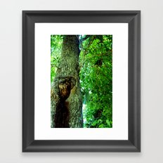 treehole2 Framed Art Print