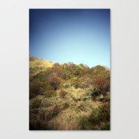 coastal walking trail Canvas Print