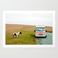 Dartmoor Pony Fancies An… Art Print