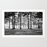 The Magic Forest Art Print
