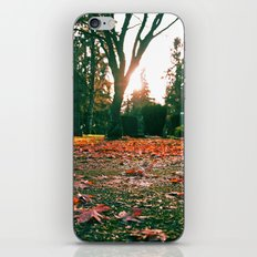 Cemetery details iPhone & iPod Skin