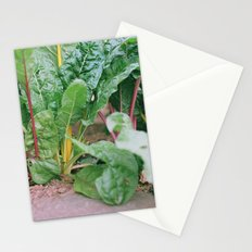 Rainbow Chard Stationery Cards