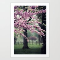 Blossoms For The Road Ah… Art Print