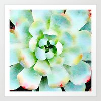 Mint Watercolor Succulent Art Print