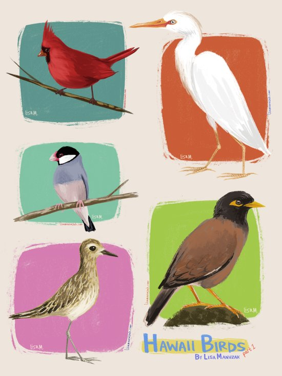 Hawaii Birds Collection Part 1 Art Print