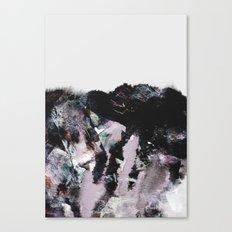 MG00 Canvas Print
