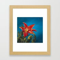 Morning Star Lily Framed Art Print