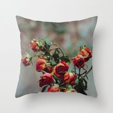 Windowsill Roses no. 1 Throw Pillow