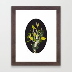 Snake - Green Framed Art Print