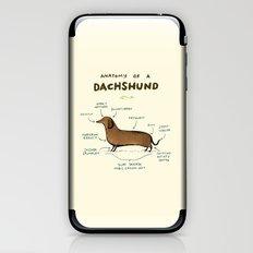 Anatomy of a Dachshund iPhone & iPod Skin