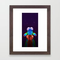 Intense Mantis Shrimp Framed Art Print