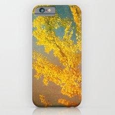 Yellow Ginkgo Tree in Autumn Slim Case iPhone 6s