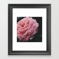 Pink Tears  Framed Art Print