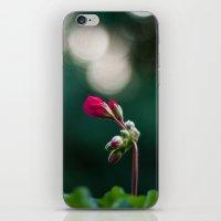 Looking Away iPhone & iPod Skin