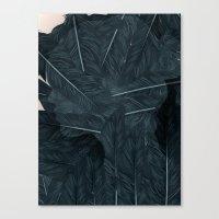 Ornithology-B Canvas Print