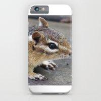Chipmunk iPhone 6 Slim Case