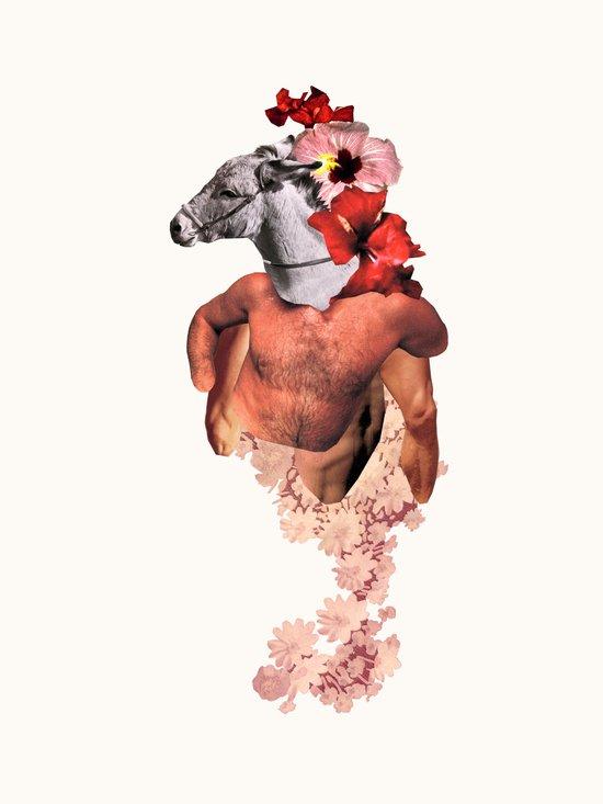Donkey Rosario Canvas Print