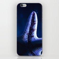 Starfish iPhone & iPod Skin