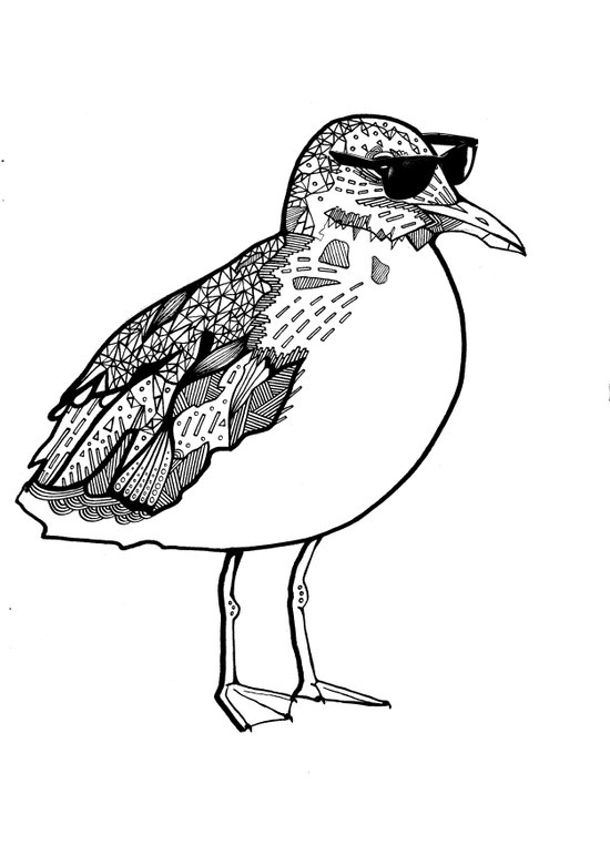 cool Seagull Art Print