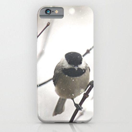 Chickadee in Winter iPhone & iPod Case