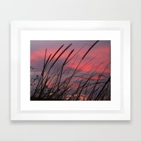 Sunset through the Reeds Framed Art Print