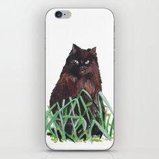 grass cat iPhone & iPod Skin