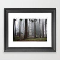 A foggy walk in the woods Framed Art Print