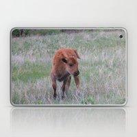 Baby Buffalo Calf Laptop & iPad Skin