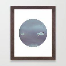 2 seagulls Framed Art Print