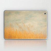 Amber Wave -- Tall Golden Grass in a Blue Ridge Highlands Pasture Laptop & iPad Skin