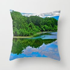 From the Bridge Throw Pillow