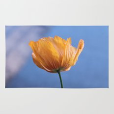 A spring wild yellow flower in blue background. Rug