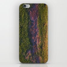 Merriweather iPhone & iPod Skin