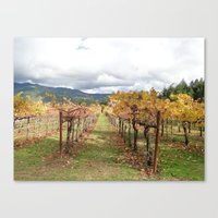 After the Crush Canvas Print