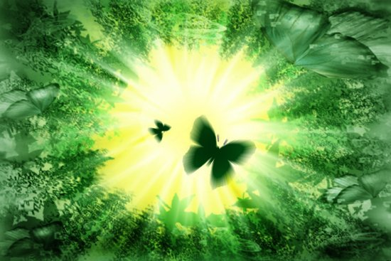 "The sun and the ""Butterfly - Effect""! Art Print"