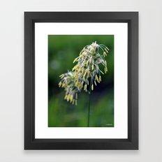 Bell Grass Framed Art Print