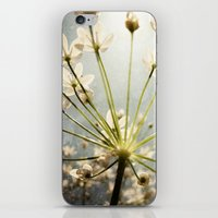 Botanical Explosion iPhone & iPod Skin