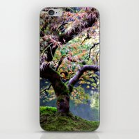 Autumn Maple iPhone & iPod Skin