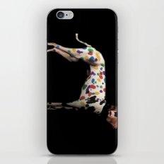 Dog Bear iPhone & iPod Skin