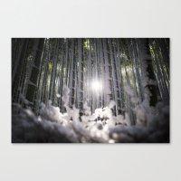 Arashiyama Bamboo in Winter Canvas Print