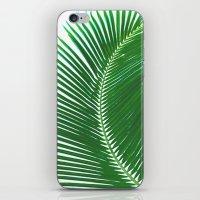 ARECALES II iPhone & iPod Skin