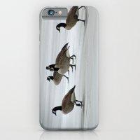 Graceful Geese iPhone 6 Slim Case