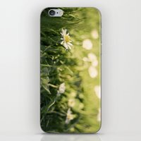 flower Margarita iPhone & iPod Skin