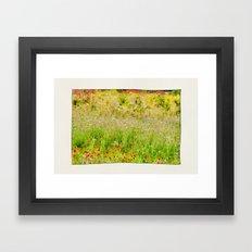 Wildflower Meadows. Framed Art Print