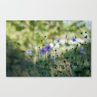 Purple meadow flowers Canvas Print