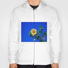 BLUE, YELLOW AND GREEN Hoody