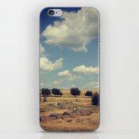Wisconsin Summer iPhone & iPod Skin